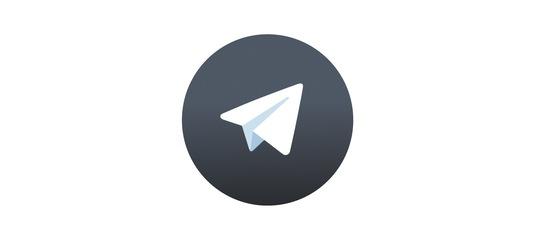 TelegramX_logo
